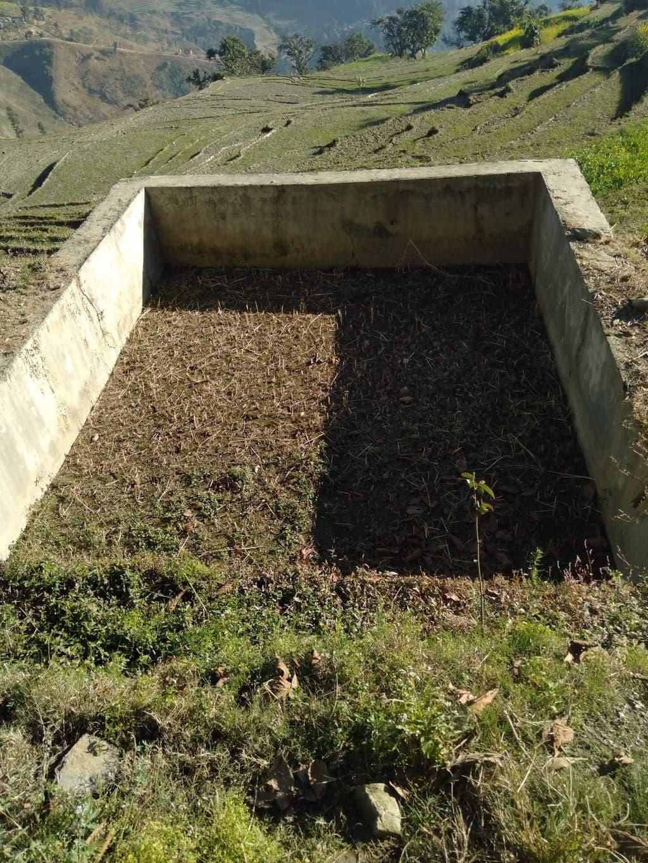 डेढ लाखमा बनेको पानी पोखरी भित्र धान खेती